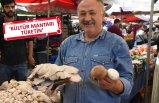 Uzmanlar doğadaki mantarlar için uyarıyor: Rus ruletinden daha riskli