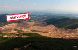 Kanada Hükümeti'nden İzmir Barosu'na 'Kaz Dağları' yanıtı