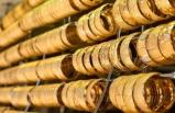 Altın fiyatlarında hareket var mı?