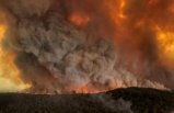 Avustralya yangınları için flaş iddia: Eğer doğruysa…