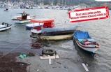 Foça'da fırtınada ağaçlar devrildi, tekneler battı