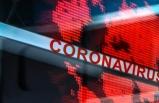 Çin'den flaş haber! Corona'dan ölen insan sayısı...