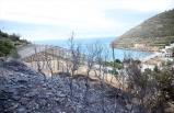 3 hektarlık alan zarar gördü