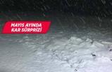 Burası Ege! Lapa lapa kar yağdı