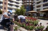 Sosyal Yaşam Kampüsü'ndeki anneler için bahçeye çiçek