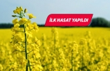 Torbalı'da üretimine başlanan kanolada ilk hasat sevinci