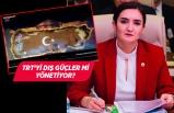CHP İzmir Milletvekili Av. Sevda Erdan Kılıç soru önergesi verdi