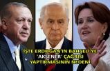 İşte Erdoğan'ın Bahçeli'ye 'Akşener' çağrısı yaptırmasının nedeni