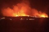 Ayvalık Şeytan Sofrası'nda yangın