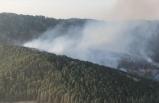 Bergama'da orman yangını çıktı