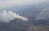 İzmir Güzelbahçe'de ormanlık alanda yangın