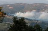 Kütahya'da 3 hektar orman alanı zarar gördü