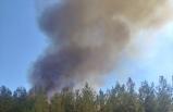 Muğla'da dördüncü orman yangını da kontrol altına alındı