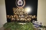Muğla'da uyuşturucu operasyonunda 3 zanlı yakalandı