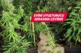 İzmir'de evini uyuşturucu serasına çeviren kişi gözaltına alındı