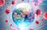 Dünya genelinde Kovid-19 77 milyon 718 bini geçti