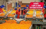 """""""Emeği enflasyon karşısında, ihracatçıyı rekabette korudu"""""""