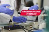 Ege'nin korona virüs aşısı için flaş gelişme!