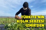 Türkiye'nin kışlık sebzesi İzmir'den