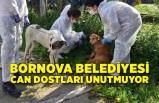 Bornova Belediyesi can dostları unutmuyor