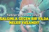 Türkiye'de corona virüs: Salgınla geçen bir yılda neler yaşandı?