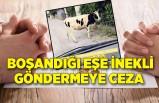 İzmir'de boşandığı eşe inekli göndermeye ceza