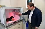 Çiğli Belediyesi'nden hayvan dostu proje: yoğun bakım ünitesi