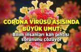 Corona virüsü aşısında büyük umut: Bilim insanları kan pıhtısı sorununu çözüyor