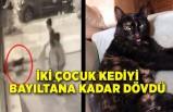İki çocuk kediyi bayıltana kadar dövdü
