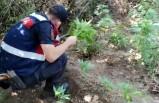İzmir'de uyuşturucu operasyonlarına 2 tutuklama