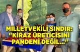 """Milletvekili Sındır: """"Kiraz üreticisini pandemi değil..."""""""