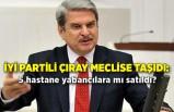İYİ Partili Çıray meclise taşıdı: 5 hastane yabancılara mı satıldı?