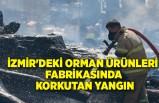 İzmir'de orman ürünleri fabrikasında yangın