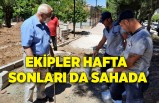 Karabağlar Belediyesi ekipleri hafta sonları da sahada