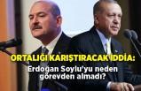 Ortalığı karıştıracak iddia: Erdoğan Soylu'yu neden görevden almadı?