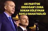 AK Parti'de Erdoğan'ı zora sokan Süleyman Soylu rahatsızlığı