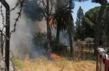 Aydın'da tarihi fabrikada yangın çıktı!