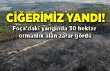 Foça'daki yangında 30 hektar ormanlık alan zarar gördü