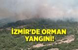 izmir'de orman yangını