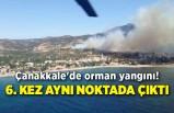 Çanakkale'de orman yangını! 6. kez aynı noktada çıktı