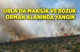 Urla'da makilik ve bozuk orman alanında yangın