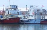 """Uzmanlar ve balıkçılar arasında """"Marmara Denizi'nde av sezonu ertelenmeli mi?"""" tartışması"""
