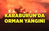 Karaburun'da orman yangını