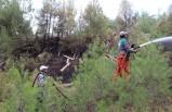 Kütahya'daki yangınında 4 hektar alan zarar gördü