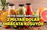 Meyve sebze mamulleri 2 milyar dolar ihracata koşuyor