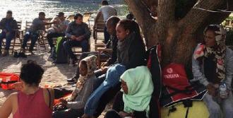 Midilli'de Mülteci Teknesi Kayalıklara Oturdu