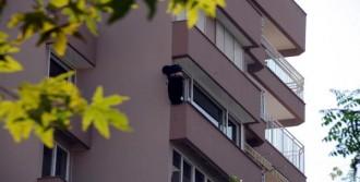 10'uncu Kat Penceresinden Atladı