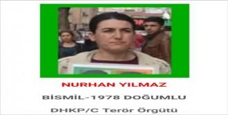 Terörist İstanbul'da Yakalandı
