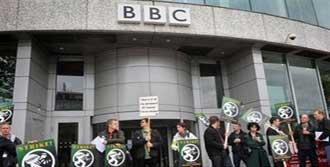 BBC Grevde!