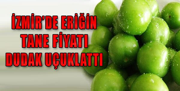 İşte İzmir'de Erik Fiyatı